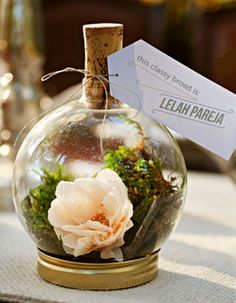 Obsessed! DIY Terrarium for place cards!
