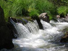 Río Jarama, el agua es vida y los ríos bien conservados nuestro futuro.
