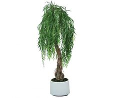 artificial weeping willow spacegreen Weeping Willow, Greenery, Trees, Tree Structure, Wood