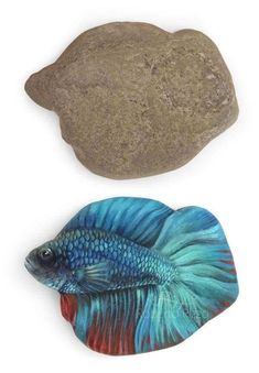 Take a rock and paint what you see! Fun art. Japanese Beta Fish painting on a rock.