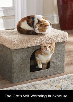 Foldable cat cubby with a self-warming pad that uses self-warming insulation to reflect a cat's natural body heat and create a warm environment without electricity. Space Blanket, Hammacher Schlemmer, Cat Things, Purchase History, Body Heat, Cubbies, Insulation, Stability, Cat Lovers
