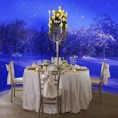 Antonio Sánchez Mobiliario para eventos te ofrece los mejores y más glamorosos accesorios que dejaran helados a tus clientes, amigos e invitados, en estas próximas fiestas invernales.