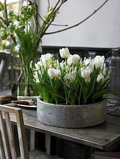 まるで室内にガーデンがあるみたい! お家でも真似したくなるアイディアです◎ 無骨な雰囲気がさらにお花たちを引き立たせてくれています。
