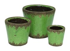 The Pedro Planters from Urban Barn - beautiful vibrant green with a timeworn touch