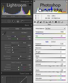 RAW vs. JPG and Photoshop vs. Lightroom
