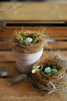 Learn how to make realistic looking bird's nest using free materials from your g. Learn how to make realistic looking bird's nest using free materials from your garden. Perfect for Spring and Easter Bird Nest Craft, Bird Nests, Pot Pourri, Diy Ostern, Deco Floral, Easter Crafts, Easter Decor, Easter Ideas, Spring Crafts