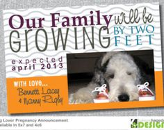 Dog Lovers - Pregnancy Announcement