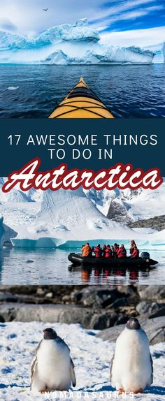 Can you believe Antarctica travel is possible? Here are 17 incredible things to do when you go on this beautiful adventure. #antarctica