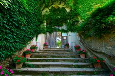 Flower pot staircase and ivy walls.