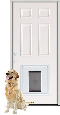 Prehung Doors Masonite Doors 30 In X 80 In Solidoor