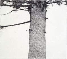 Art Hansen, Man in a Tree, 1976, etching