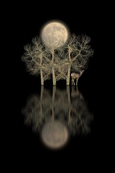 by peter holme iii
