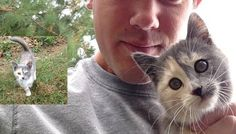 They say cats choose their humans. This is exactly what happened to this guy who met a calico cat in…