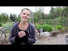 Bli självförsörjande på grönsaker - YouTube