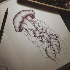 Ideas For Drawing Nature Sketch Jellyfish Drawing, Jellyfish Tattoo, Jellyfish Art, Jellyfish Decorations, Sea Creatures Drawing, Creature Drawings, Animal Drawings, Ant Drawing, Biro Drawing