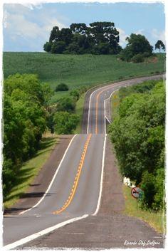 Highway - Vacaria, Rio Grande do Sul - Brazil