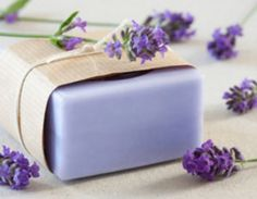 Learn How To Make Homemade Lavender Soap | The WHOot