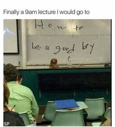 THIS IS MY PHYSICS LECTURE HALL!!!! THIS IS AT URI!!!!!!! I HAD FRIENDS IN THIS CLASS WHEN IT HAPPENED!!!!!!!BLESSSSSSSSSSSSSSSSS