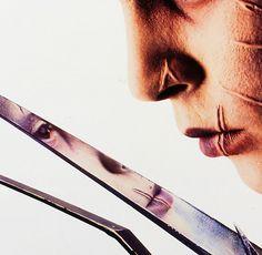 reflections of Edward