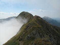 Moldoveanu Peak seen from Vistea Mare Peak Carpathian Mountains, Mountain Range, Hungary, North West, Romania, Poland, Country, World, Places