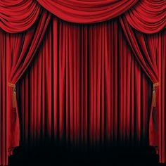 Red Curtain Backdrop Banner - OrientalTrading.com $10.00 - great for a picture back drop?