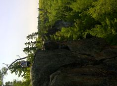 Hike the Eagles Nest Lookout and see the view from above like nowhere else in the area...access point is just a short distance from Calabogie Peaks Resort. http://calabogie.com/summer-fun/hiking/trail-descriptions.html