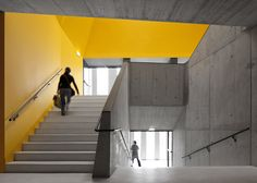 Braamcamp Freire Scuola Secondaria da CVDB Arquitectos