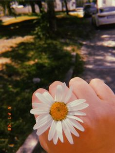 Yeahh sometimes imma get a lil flower and my mind blooms/blowns. 🌼 [ i was searching for a relevant quotes but ended up with *cough* one ] . Sky Aesthetic, Flower Aesthetic, Aesthetic Photo, Aesthetic Pictures, Vsco Photography, Girl Photography Poses, Tumblr Photography, Story Instagram, Creative Instagram Stories