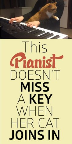 This Pianist Doesn't Miss A Key When Her Cat Joins In!