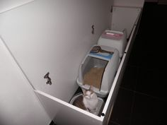 Finally I found a suitable piece of furniture to accommodate two litter-boxes. I found many clever ideas on how to conceal one box, but I didn't want to have 2 pieces of furniture, should they be stylish as hell. Since we have 3 cats in the house and two of them are a bit more… [&hellip