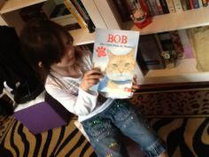 Cortesias Novo Conceito -  BOB III Um gato fora do normal
