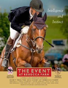 Rebecca farms Eventing shows