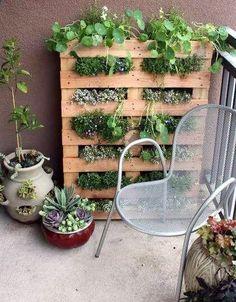 Backyard Ideas on a Budget Organic Gardening, Gardening Tips, Urban Gardening, Gardening Courses, Apartment Patio Gardens, Apartment Plants, Apartment Backyard, Apartment Living, Vertical Gardens