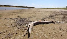 New NASA data show how the world is running out of water.