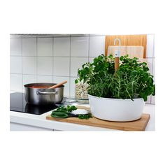 BITTERGURKA Hanging planter  - IKEA- Grow your own herbs at home #SustainableLiving #LifeatHome #Ikea