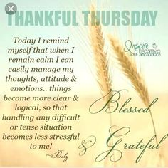 """""""CALM"""" the operative word. Thursday Morning Quotes, Thursday Prayer, Happy Thursday Quotes, Thankful Thursday, Good Morning Happy Thursday, Thursday Images, Morning Post, Nice Good Morning Images, Good Morning Messages"""