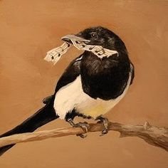 Magpie stealing notes