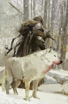The Viking and his wolf heading into the forest. #Vikings #Norway