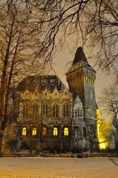 Winter night at the castle - Budapest, Hungary (by Raphael Hérédia)