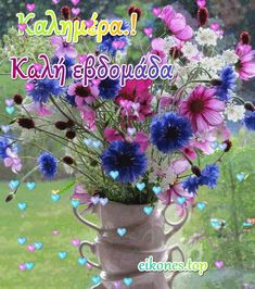 Good Night, Good Morning, Floral Wreath, Flowers, Plants, Dolce, Video, Smile, Frases
