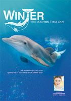 SeeWinter Store - Winter, The Dolphin That Can - Documentary DVD, $9.95 (http://cmastore.seewinter.com/winter-the-dolphin-that-can-documentary-dvd/)
