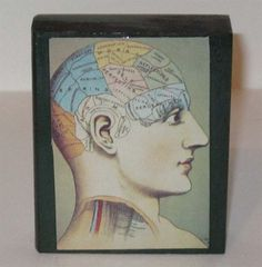 Vintage Phrenology Illustration Art Block  by StraightJacketPrjcts, $10.00
