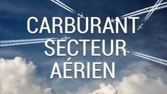 Carburant Secteur Aérien Chief Executive