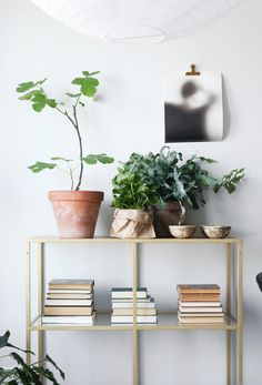susanna vento - yit smartti - shelf styling with old books and green plants