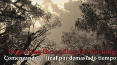 Scars -  Michael Malarkey (Lyrics/Español)