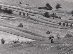 Martin Martinček: Daždivý deň:1964 - 1967
