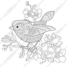 Adult Coloring Page. Sparrow Bird. Zentangle Doodle Coloring