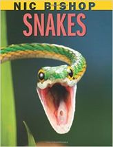 Nic Bishop Snakes by Nic Bishop is a vivid nonfiction choice. Bishop's books on Butterflies and Moths, Lizards, Frogs and Marsupials are also great choices. Scary Snakes, Children's Book Awards, Trade Books, Summer Reading Lists, County Library, Science Books, Read Aloud, Book Publishing, Book Series