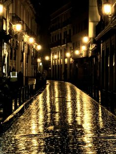 Streets of Valencia. This picture reminds me about one night in Granada. We were walking home and we saw some flamenco dancers walking on the stone cobble streets with the old lanterns lighting the way. Night Photography, Street Photography, Old Lanterns, Rainy Night, Rainy Dayz, Night Rain, Whatsapp Wallpaper, Street Lamp, Night City