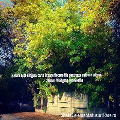 Imagini pentru citate despre natura Thoughts, Ideas